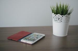 Toffee iPhone 6 Flip Wallet-1