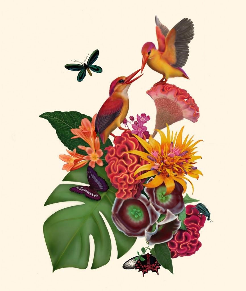 Illustrating nature through its details