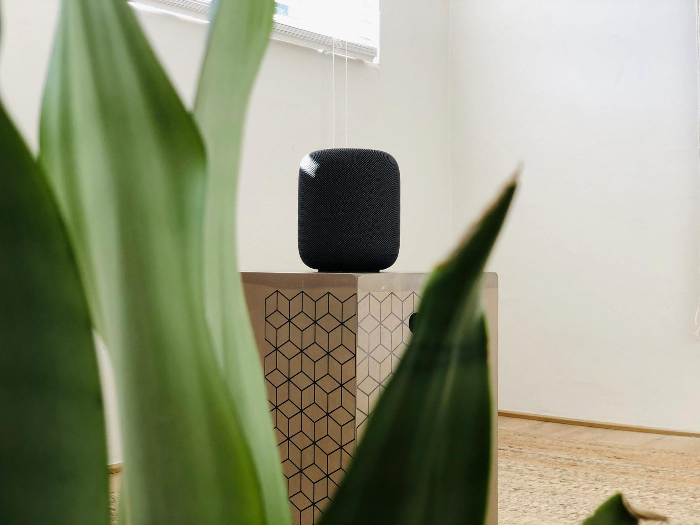 Space Grey HomePod in Home